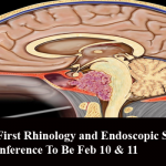 Pakistan's First Rhinology and Endoscopic Skull Base Surgery Conference To Be Feb 10 & 11